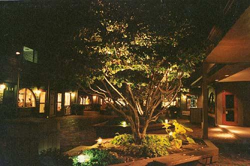 Landscape Lighting Concepts s